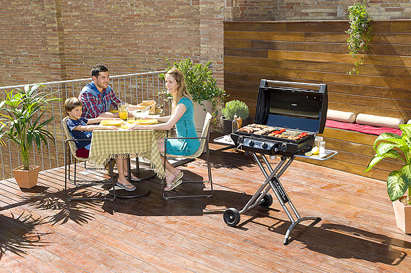 The 2 Series Compact LZ BBQ